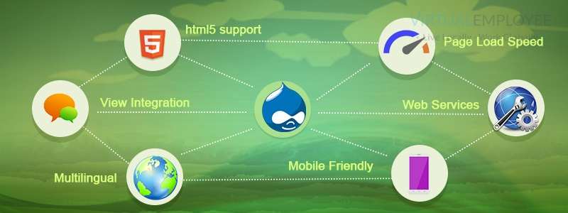 Why Hiring a Remote Team of Drupal Professionals Suits Businesses