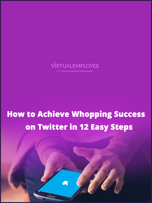 How to Achieve Whopping Success on Twitter in 12 Easy Steps